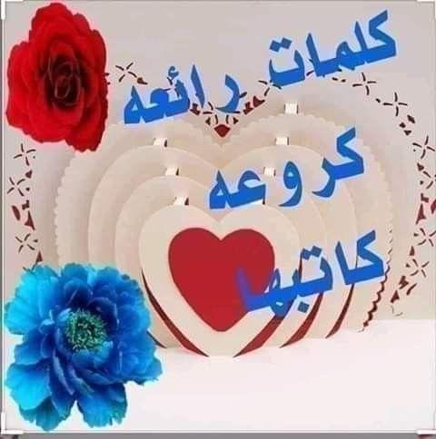 Pin By نهر الجمال On تعليقات وردود فيس بوك Morning Love Quotes Bird Photography Arabic Love Quotes
