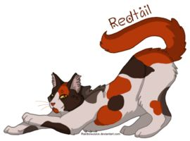 002: Redtail by RainbowJuice