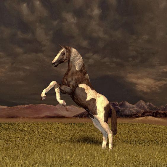 Hier ein Bild erstellt in DAZ Studio mit Millenium Horse und in Photoshop nachgearbeitet.