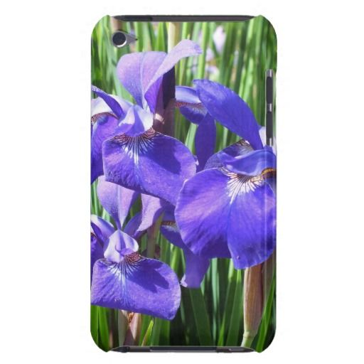 Purple Irises iPod Touch 4g case iPod Touch Cases