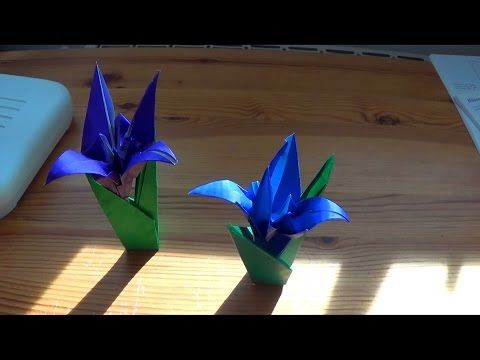 How To Fold Yourself An Origami Iris Flower In Less Than Ten Minutes Youtube Origami Flowers Iris Flowers Origami