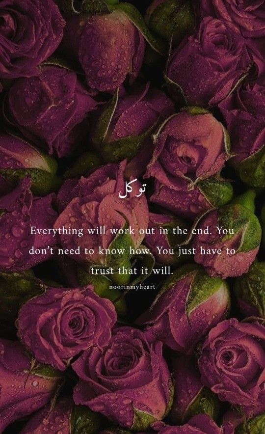 Pin On Nice Quotes