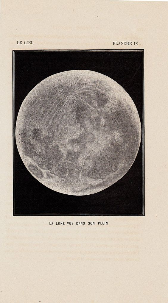 1870 Antique MOON print FULL MOON by TwoCatsAntiquePrints on Etsy, $29.00