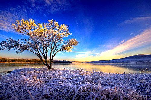Sunrise Frost, Sutherland, Scotland photo via mycolouring