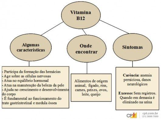 Valores de vitamina b12 no sangue