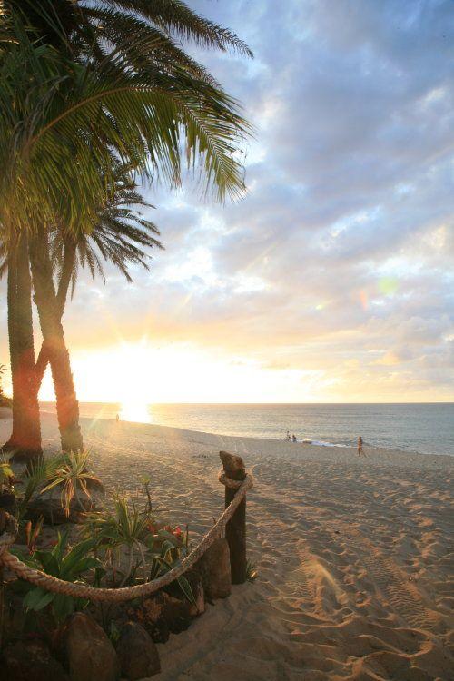 ヤシの木とハワイのビーチに朝日