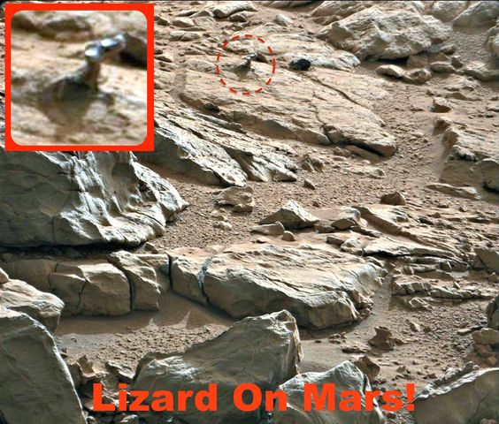 UFO SIGHTINGS DAILY: Lizard on Mars Found By Rover, NASA Photo, Aug 2015, UFO Sighting News.