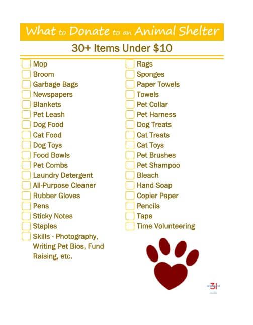 What To Donate To An Animal Rescue Shelter Organized 31 Animal Rescue Fundraising Animal Shelter Donations Animal Rescue Ideas