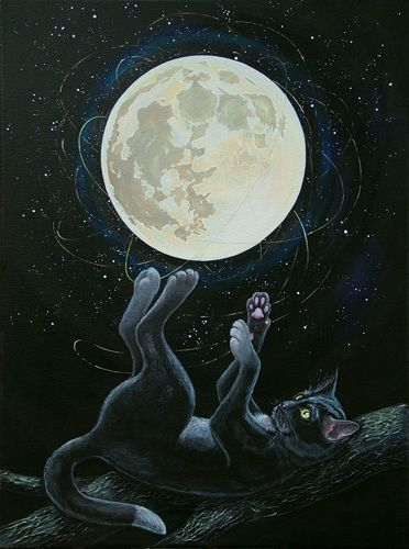 Cat playing with the moon by Irina Stetsenko: