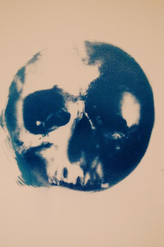 New impossible skull cyanotype by Andrew Millar