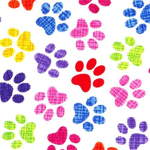 Paw Prints Wallpaper