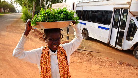 Cestovanie po africkej Gambii. Článok je tu: http://www.dobrodruh.sk/afrika/gambia-typicka-dovolenka-v-afrike-alebo-ako-je-beloch-stelesnenim-bohatstva