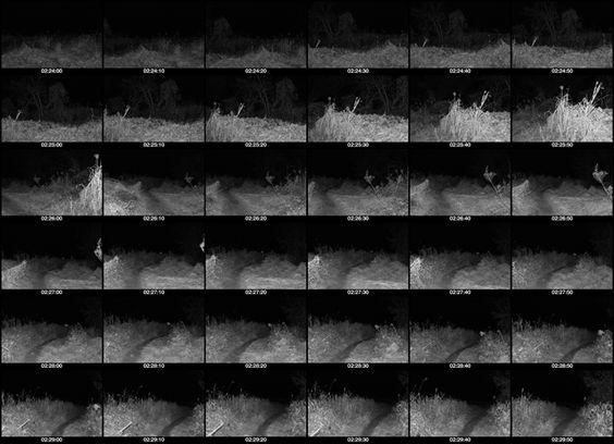 ILLUMINATE THE PERIOD Works,Exhibition PERIOD July.15,2014-October.1,2014 #exhibition #modernart #photography #nikon #juna21