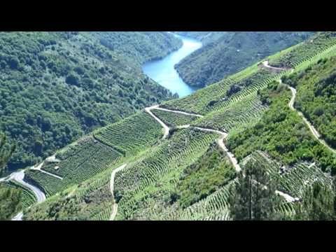 Hoy En Aprendizaje Viajero Traemos Una Ruta En Coche Visitando Los Cañones Del Sil En Plena Ribeira Sacra Gallega Durante ésta Rut Rutas En Coche Rutas Viajes