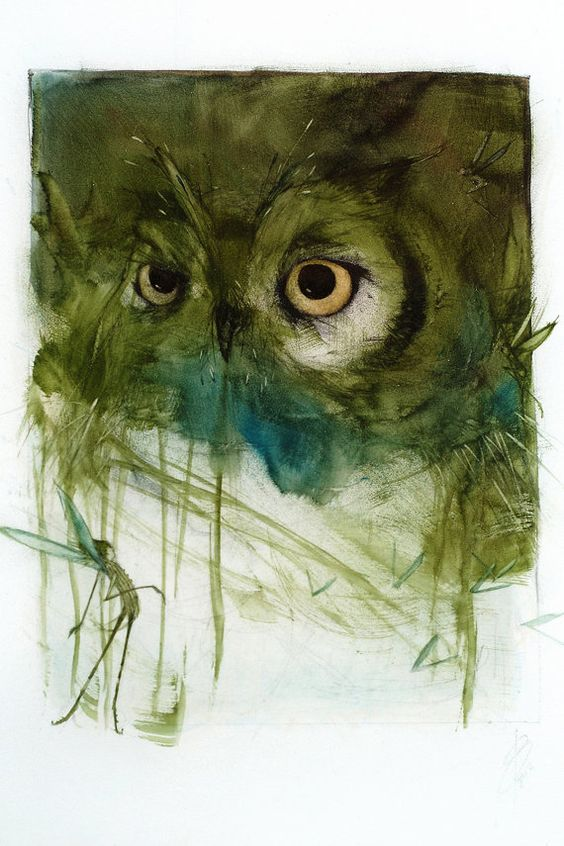 Forest Dwellers Owl: