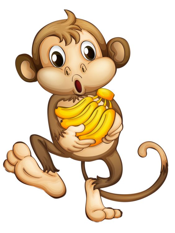 monkey pictures cartoon pinterest the world s catalog of ideas 4705