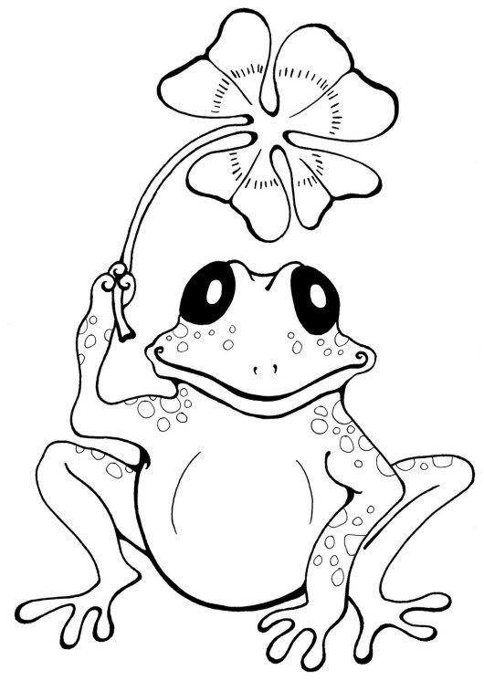 Cute Frog Cartoon Coloring Book Frog Coloring Pages Mandala Coloring Pages Animal Coloring Pages