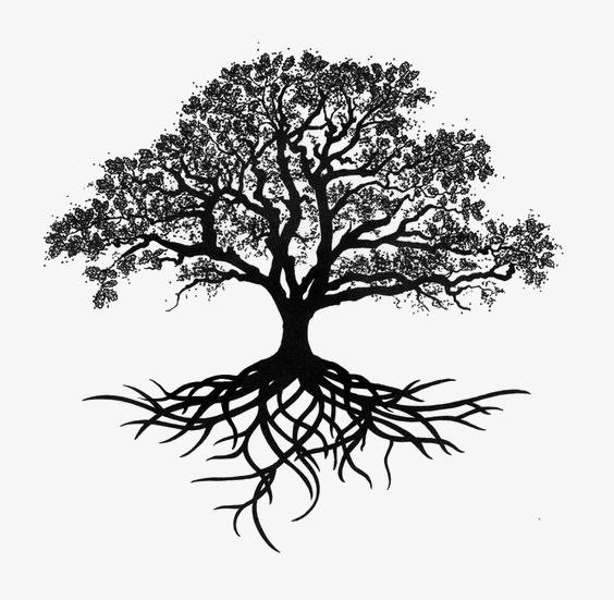 Trees Silhouette Ink Trees Chinese Style Decorative Trees Png Transparent Clipart Image And Psd File For Free Download Oak Tree Tattoo Tree Roots Tattoo Roots Tattoo