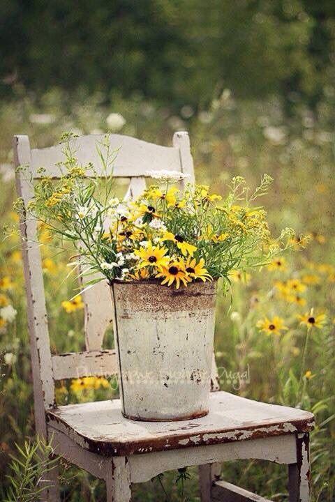 Stuhl im Garten