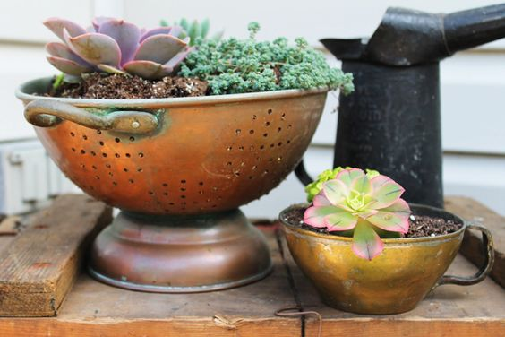 Colander flower pot | Sheknows.com