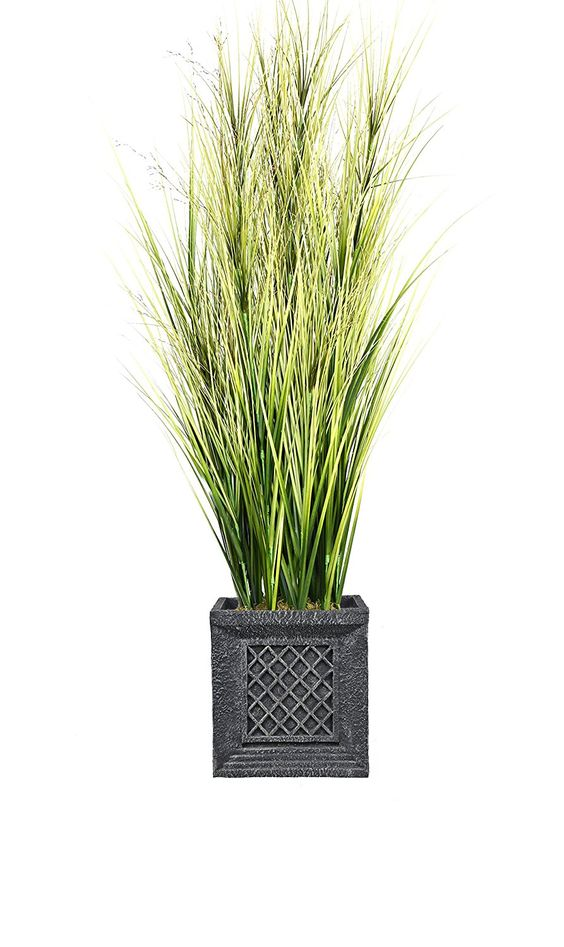Laura Ashley VHX114215 Onion Grass with Twigs Planter, 66' ** Visit the image link more details.