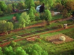 Thomas Jefferson's Monticello is one of my favorite places on earth and when I'm ready for garden inspiration I get out my books I got there! His Kitchen Garden is just DREAMY! (Not that the rest of the gardens aren't.)  :):