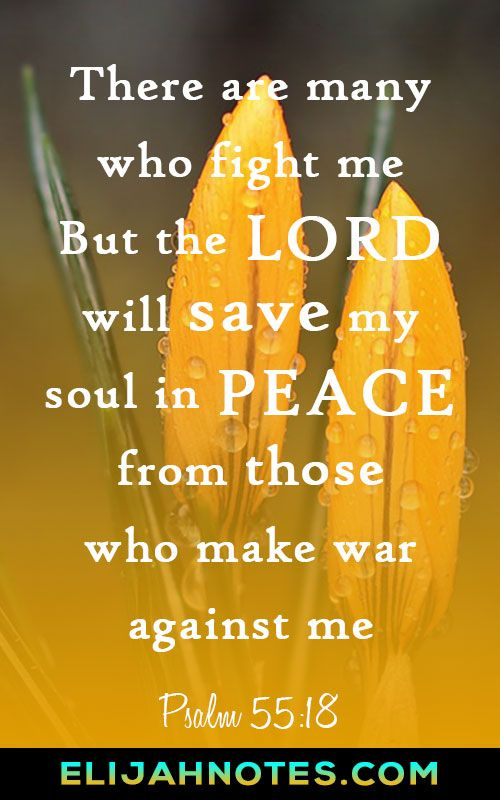 Saved in the Peace of God. Bible Verses About Peace Of Mind And Comfort. #peace #bible #verse #faith #christian #motivation #wordstoliveby #words #quoteoftheday #happiness #holyspirit #Christianquotes #biblequotes #enemies #sundaymorning #sunday