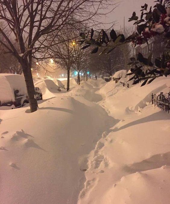 #Repost @thehushreport  #Snowpocalypse: Capitol Hill  Washington D.C ---- Check out the rest of our photos! ---- #HushReport #Snowstorm #blizzard2016  #Jonas #SnowZilla #snowfall #snow  #snowday  #WashingtonDC #capitolhill #PhotosFromTheSnowpocalypse #extremeweather #globalwarming  #climatechange  #climatecontrol  #HAARP  #weathermodification  #geoengineering by gee11212