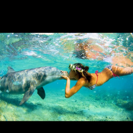 This will be me this summer. I love dolphins!!!