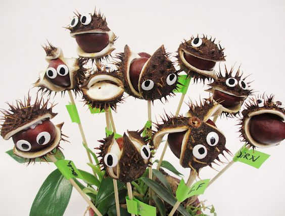 Skapa en galet rolig bukett av kastanjer och hobbyögon. | Horse chestnut bouquet: