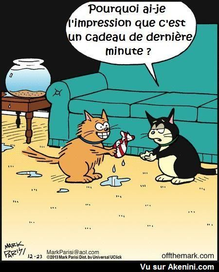 Images drôles animaux - Funny cartoons animals | Images drôles animaux - Funny cartoons animals ...