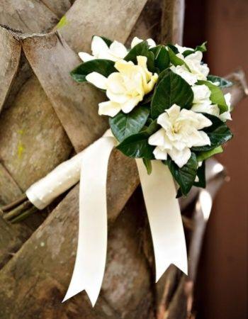 gardenie buchet mireasa - Căutare Google