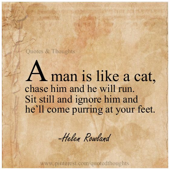 Quotes Of He Is The Perfect Man For Me: Cats, Truths And Lol On Pinterest