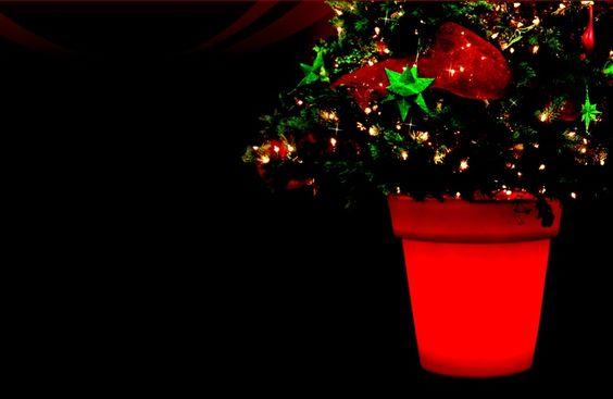 Voici un pot lumineux de Twist Production qui est créé spécialement pour accueillir un arbre de noël en vue des festivités des fêtes.