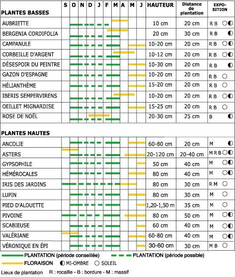 Les vivaces calendrier de plantation et de floraison for Calendrier entretien jardin