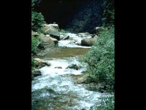 Self Calming Streams Video