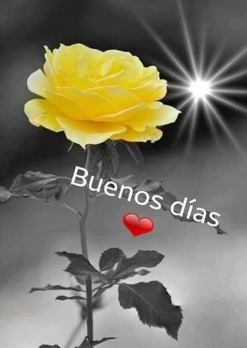 Buenos dias buenos dias buenas tardes buenas noches - Buenos dias buenas noches ...