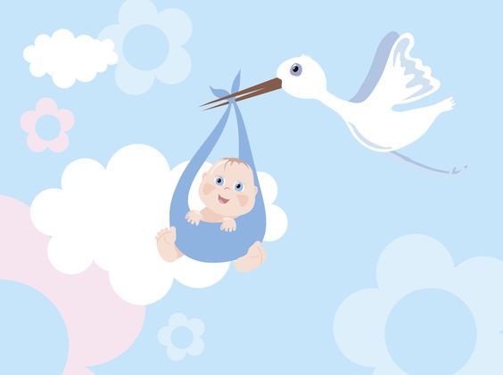 explore shower entre para baby and more babies showers baby showers