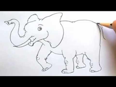 16 Gambar Kartun Gajah Duduk Motu Patlu Mencoba Untuk Menyelamatkan Bayi Gajah Saksikan Bagaimana Si Gajah Membahay Cara Menggambar Gambar Kartun Gambar Hewan
