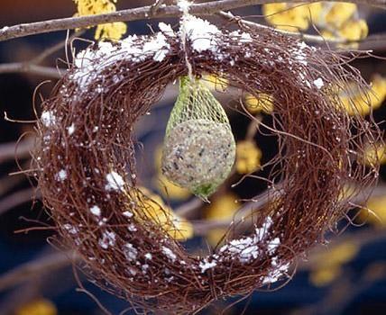 ✓ Am richtigen Platz mit dem richtigem Futter ist ein Vogelhaus überlebenswichtig - und natürlich ein absoluter Spaß für Groß und Klein.