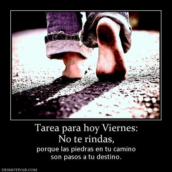 Imagen de http://www.desmotivar.com/img/desmotivaciones/161462_tarea-para-hoy-viernes-no-te-rindas.jpg.