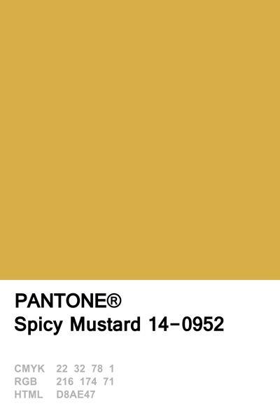 Pantone 2016 Spicy Mustard Spicy Mustard Pinterest