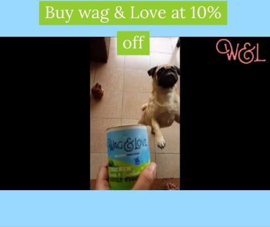 Petbutty Buy Dog Food Supplies Online Pet Store Online Online Pet Store Pet Store Online Pet Supplies