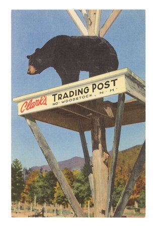 North Conway vacation- Clark's Trading Post - been going to this spot since I was a child