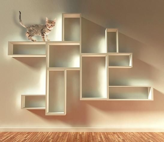 Budget Cat Wall Shelves Cat 2014 | Plaster | Pinterest | Cat wall shelves,  Shelves and Budgeting