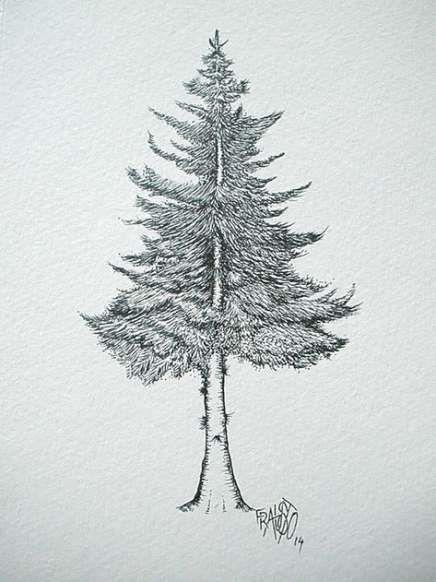 53 Ideas Drawing Ideas Easy Pencil Tree Tree Drawings Pencil Pine Tree Drawing Tree Sketches