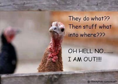 Awww leave that poor turkey alone. LOL!