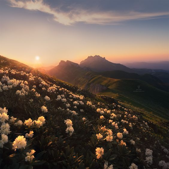 Evening in the moutains, Caucasian mountains  Adigea region, Russia,  by Dmitry Kupratsevich....