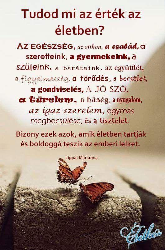 mi az a szerelem idézetek Pin by Zsofi Kalauz on igék | Cool words, Learning quotes