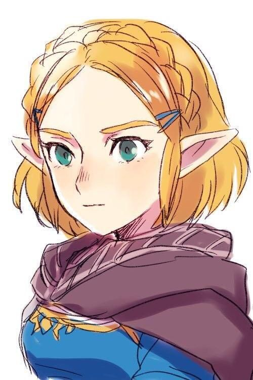 Beautiful Princess Zelda With Short Hair Hyped For The Sequel Zelda Anime Legend Of Zelda Breath Zelda Art